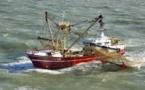 Coup d'arrêt à la pêche électrique